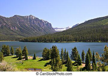 usa, krajowy, jezioro, highlite, las, montana, bozeman, gallatin