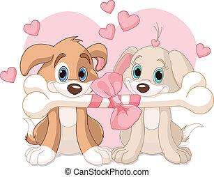 valentine, dwa, psy