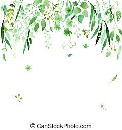 vector., kwiatowy, zielony, hand-drawn, ułożyć, akwarela, robiony