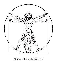 vitruvian, homo, albo, człowiek, vitruviano