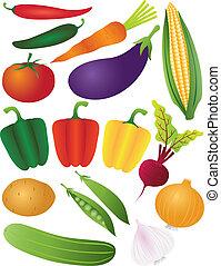 warzywa, białe tło, odizolowany, ilustracja