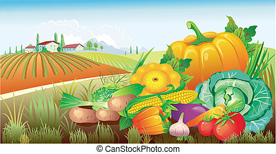 warzywa, grupa, krajobraz