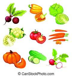 warzywa, komplet, organiczny, rysunek