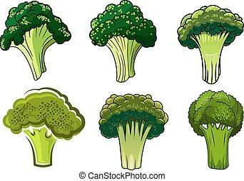 warzywa, zielony, odizolowany, dojrzały, brokuł