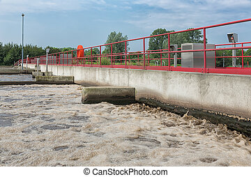 wastewater., traktowanie, roślina, ściek, wietrzenie