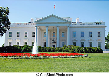 waszyngton dc, dom, biały
