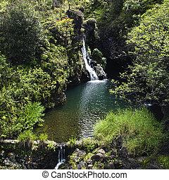 waterfall., soczysty