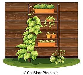 wazony, ogrodnictwo, scena, pozbywa się
