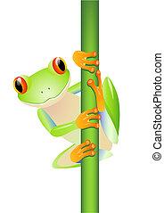 wektor, żaba, drzewo, zielony