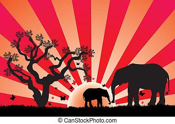 wektor, afryka, słonie