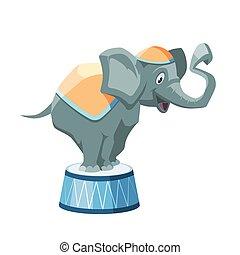 wektor, cyrk, ilustracja, słoń