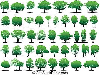 wektor, drzewa