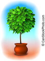 wektor, drzewo., topiary
