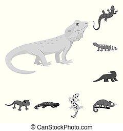 wektor, egzotyczny, web., fauna, pień, dziki, icon., symbol, zbiór, ilustracja