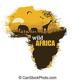 wektor, grunge, afisz, afryka, ilustracja, tło, dziki