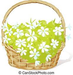 wektor, pełny, wiosna, ilustracja, kosz, fowers, -, biały