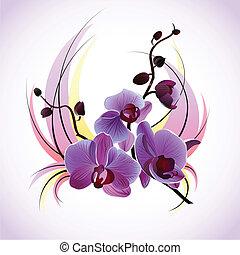 wektor, powitanie karta, orchidee