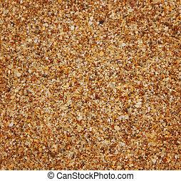 wektor, (sand), struktura