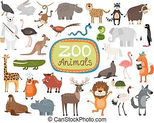 wektor, zwierzęta, ogród zoologiczny