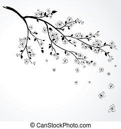 wiśnia, flowering, japończyk, gałąź