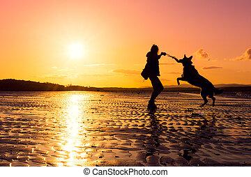 wibrujący, kolor, pies, sylwetka, hipster, podczas, dziewczyna, interpretacja, plaża, zachód słońca