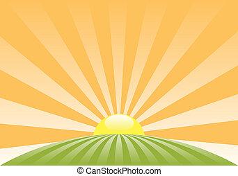 wiejski, abstrakcyjny, słońce, krajobraz, wektor, powstanie