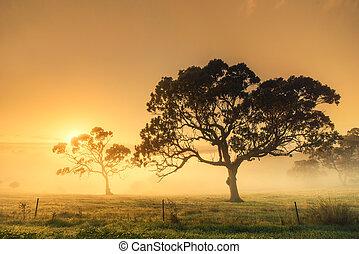 wiejski, wschód słońca