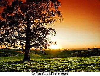 wiejski, zachód słońca