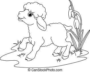 wielkanoc, kolorowanie, strona, lamb.