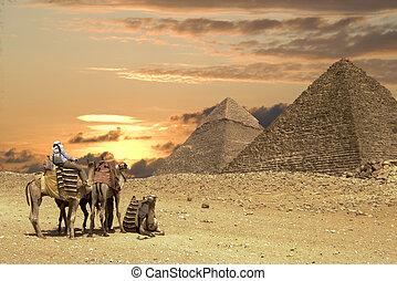 wielki, ludzie, ath, piramidy