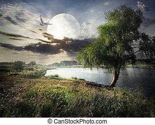 wierzba, księżyc