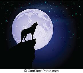wilk, wycie