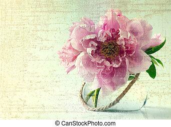 wiosna, białe kwiecie, tło, wazon