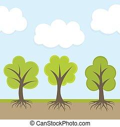 wiosna, drzewa, natura