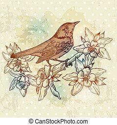 wiosna, -, ręka, wektor, rocznik wina, pociągnięty, kwiaty, ptak, karta