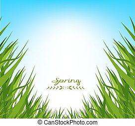wiosna, trawa, tło, świeży