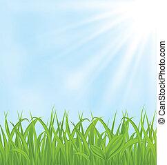 wiosna, trawa, zielone tło