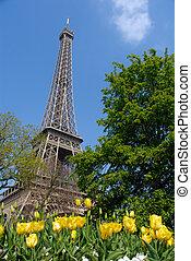 wiosna, wieża, eiffel, paryż