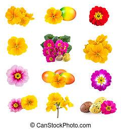 wiosna, wielkanoc, zbiór, kwiaty