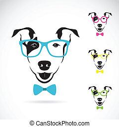 wizerunek, pies, terrier), wektor, tło, biały, (bull, okulary