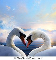 woda, dzień, miłość, wschód słońca, ruchomy, para, łabędzie