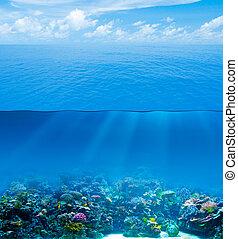 woda, podwodny, niebo, głęboki, powierzchnia