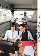 współpracowniczki, biuro