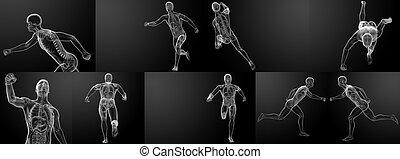 wyścigi, prześwietla, szkielet, render, 3d