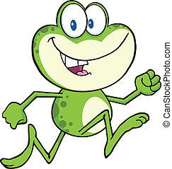 wyścigi, sprytny, żaba, zielony