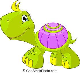 zabawny, żółw, sprytny