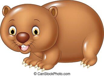 zabawny, wombat, izolować, rysunek, zwierzę
