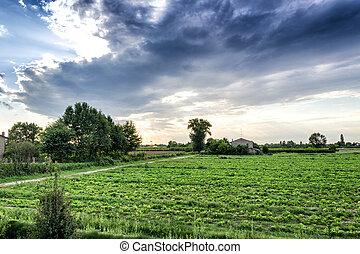 zachód słońca, kulturalny, pola