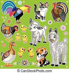 zagroda, komplet, zwierzęta, rysunek