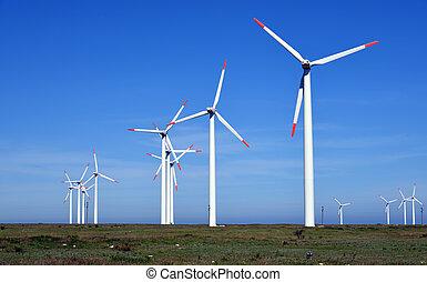 zagroda, turbiny, energia, -, źródło, alternatywa, wiatr